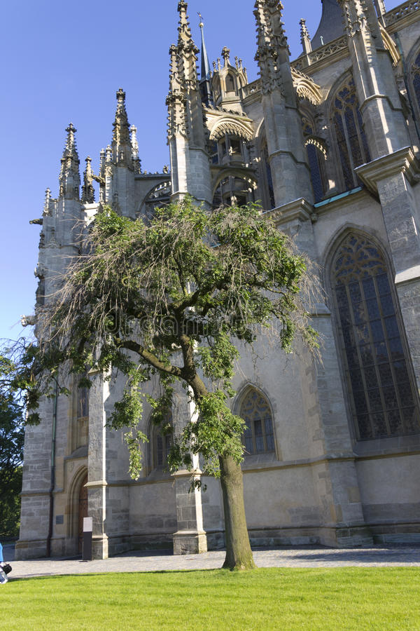 Download Single Tree Next To St. Barbaras Church Stock Photo - Image: 27131242