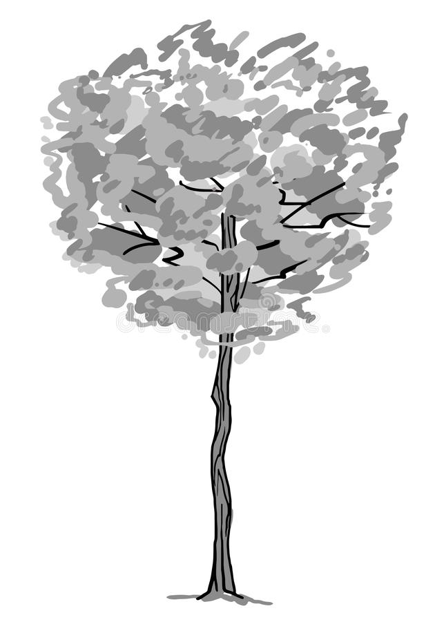 Single tree sketch. Black and white drawing isolated on white background. Simple art. Can be used for card banner stock images