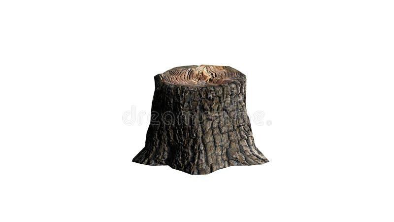 A single Tree stump. Isolated on white background royalty free illustration