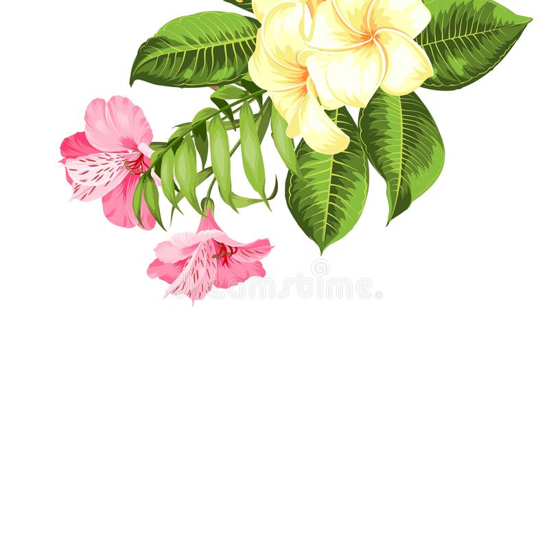 Single tropical flower bouquet at the top corner of image over white background. Blossom flowers for invitation card. vector illustration