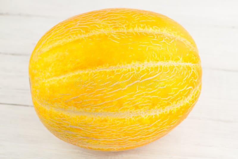 Single whole fresh ripe melon royalty free stock photography