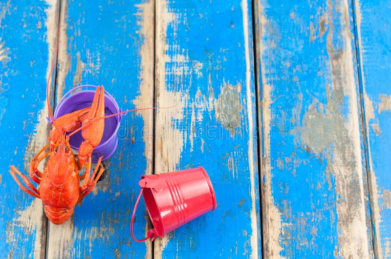 Single whole red boiled crawfish near empty violet metal bucket beside red recumbent bucket. On old rustic blue wooden planks royalty free stock photos