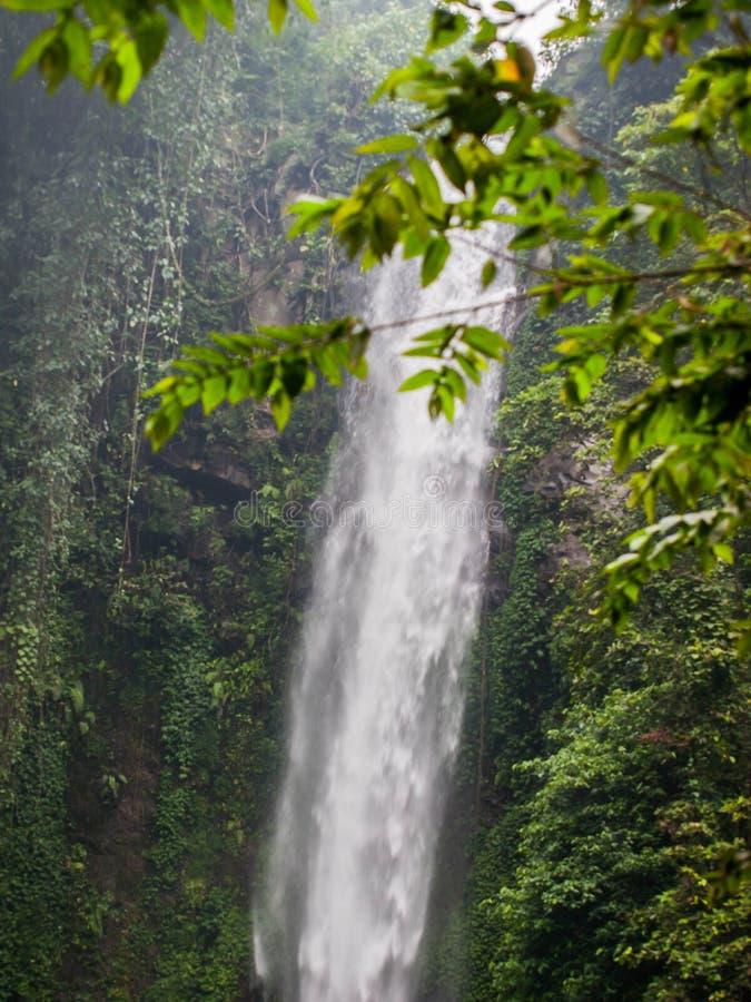 Singola cascata nel rondò cubano Indonesia fotografia stock libera da diritti