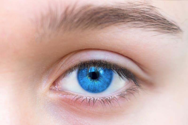 Singola fine dell'occhio della bella donna blu su immagine stock