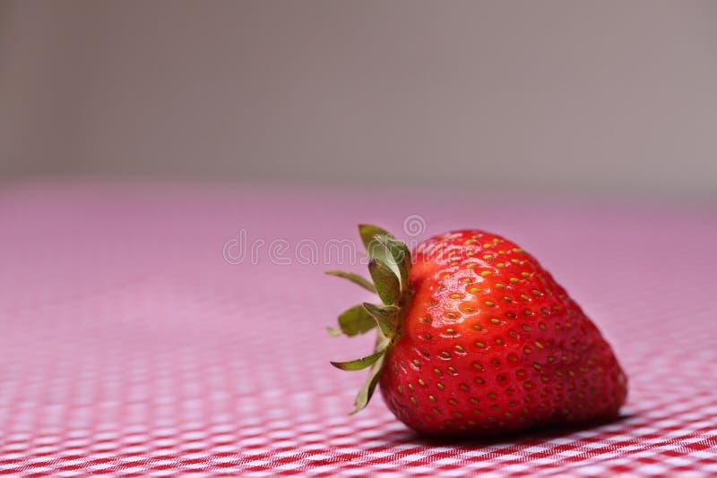 Singola fragola fresca sulla tovaglia rossa del percalle fotografia stock libera da diritti
