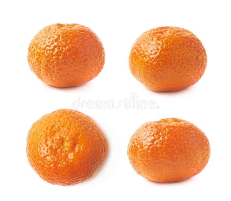Singola frutta del mandarino fotografia stock