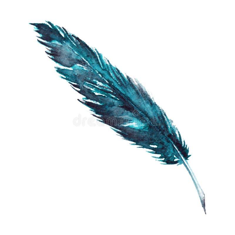 Singola piuma di uccello del turchese dei blu navy dell'acquerello isolata royalty illustrazione gratis