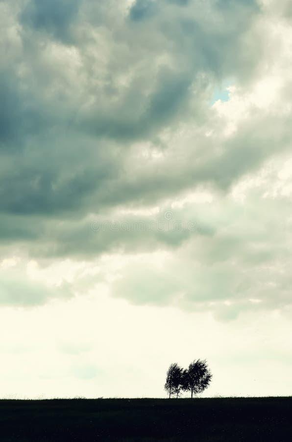 Singola siluetta minimalista dell'albero Concetto di solitudine, depressione, fuga, amicizia, supporto, cura, matrimonio fotografia stock libera da diritti
