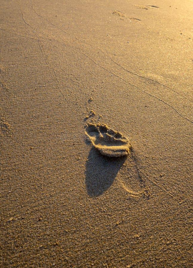 Singola stampa del piede in sabbia dorata fotografia stock