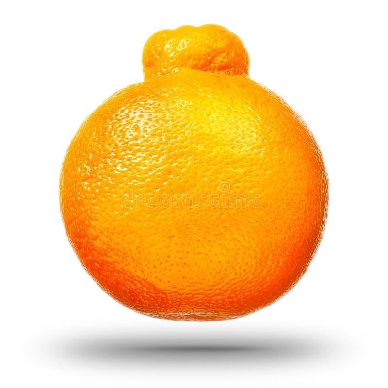 Singoli agrumi del mandarino o del mandarino fotografia stock