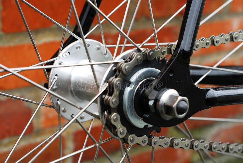 Singoli catena e raggi della bicicletta di velocità fotografie stock libere da diritti