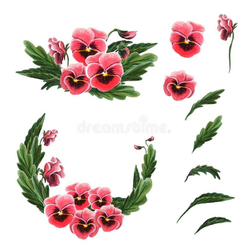 Singoli fiori, foglie, ghirlanda e un mazzo delle viole del pensiero rosse isolato su un fondo bianco illustrazione vettoriale
