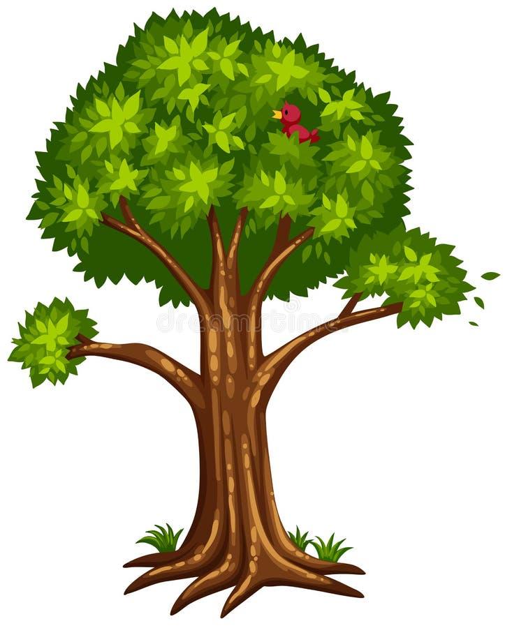 Singolo albero con l'uccello sul ramo royalty illustrazione gratis