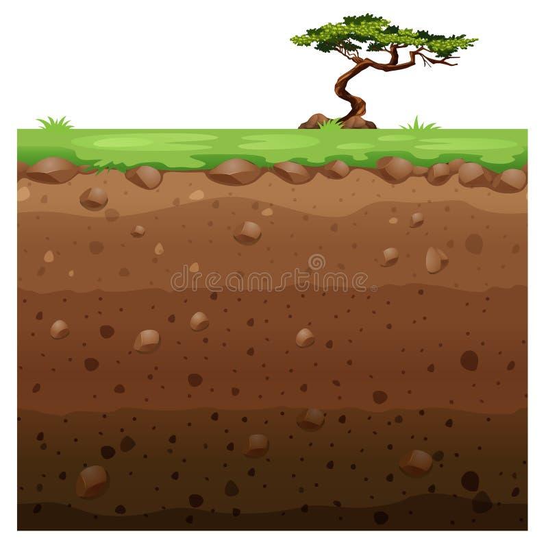 Singolo albero su superficie e sulla scena sotterranea illustrazione di stock