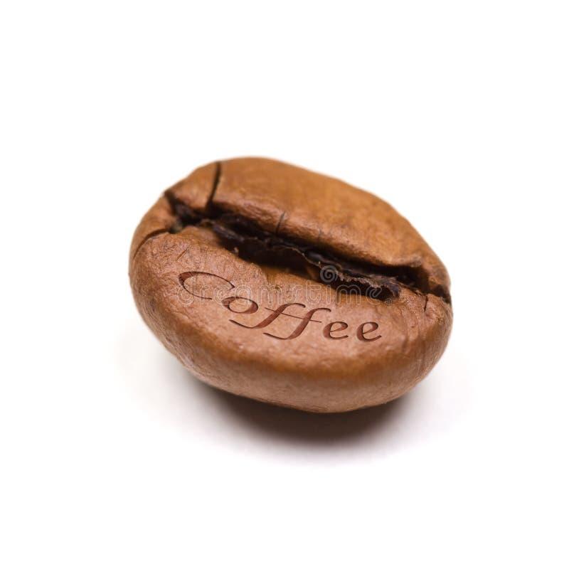 Singolo chicco di caffè isolato su priorità bassa bianca fotografie stock