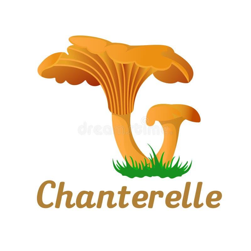 Singolo oggetto del fungo illustrazione vettoriale
