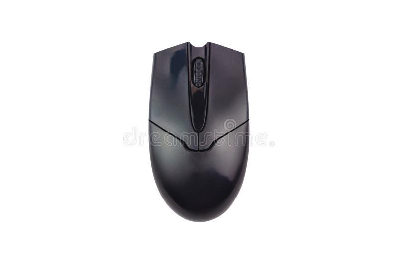 Singolo topo ottico di plastica nero del computer isolato su fondo bianco fotografia stock