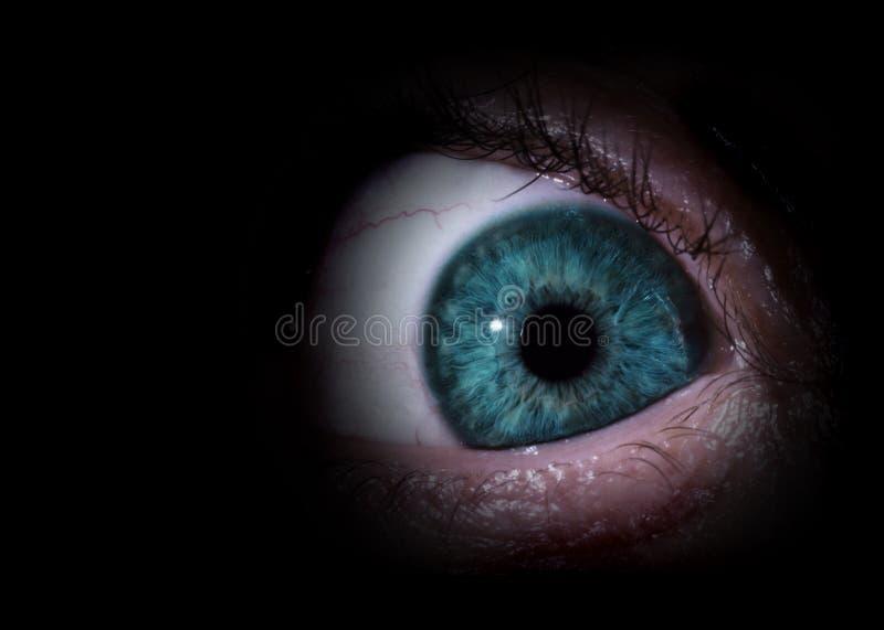 Sinister eye royalty free stock image