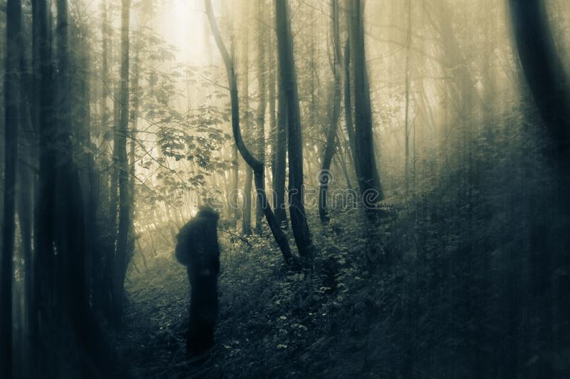 A sinister figure, with glowing eyes, looking at the camera, silhouetted on a path in a forest. With a spooky, vintage edit royalty free stock photos