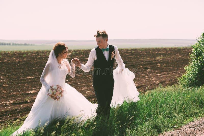 Sinnliche Braut und Bräutigam auf dem Feld lizenzfreie stockfotografie