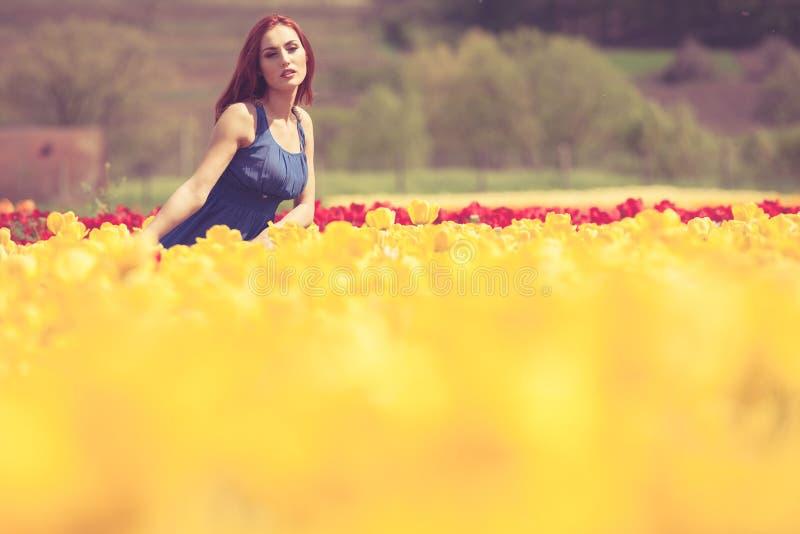 Download Sinnliche Frau Auf Dem Blumengebiet Am Sonnigen Tag Stockfoto - Bild von glücklich, kaukasisch: 90225758