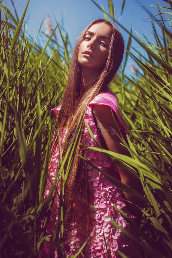 Sinnliche Frau im rosa Kleid im hohen Gras stockbild