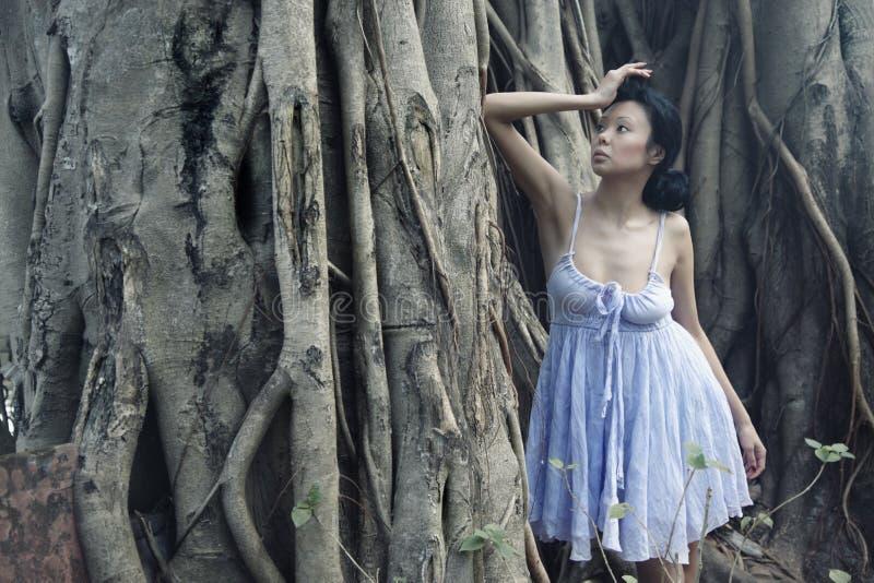 Sinnlichkeit am Bantambaum stockbilder