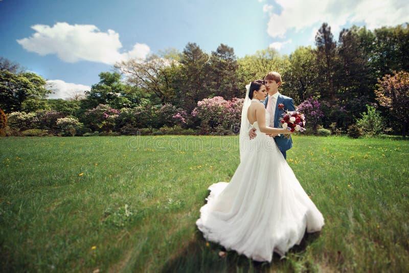 Sinnliga härliga par av nygifta personer som kramar i soligt, parkerar fotografering för bildbyråer