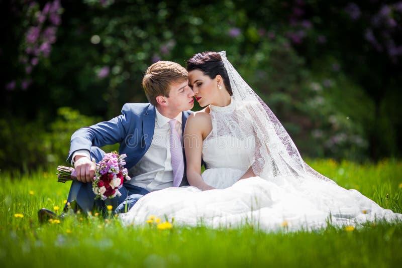 Sinnligt romantiskt nygift personparsammanträde & kyssande äng royaltyfri foto