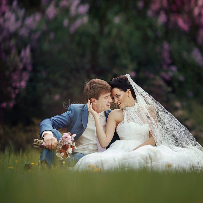 Sinnligt romantiskt nygift personparsammanträde & kyssande äng royaltyfri bild