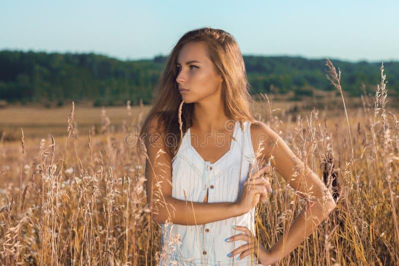 Sinnligt ung flickaanseende som poserar i fältet av högväxt gräs arkivbilder