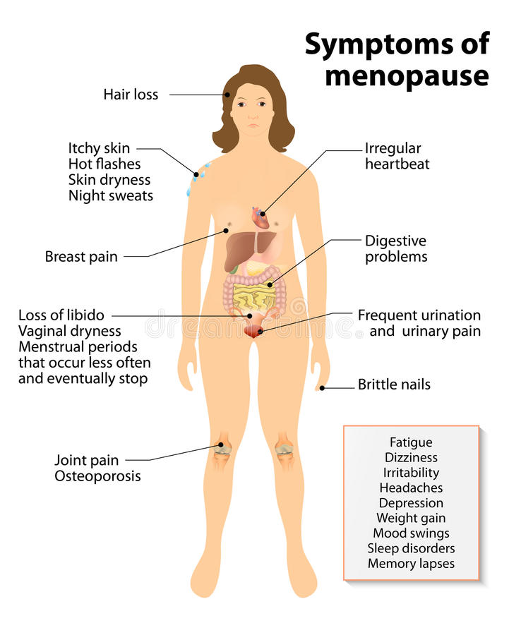 Sintomas da menopausa ilustração royalty free