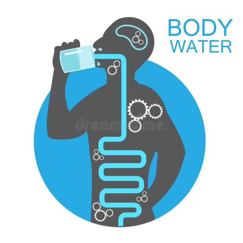 Sintomas infographic da desidratação do ícone da água da bebida da ilustração da saúde do corpo ilustração royalty free