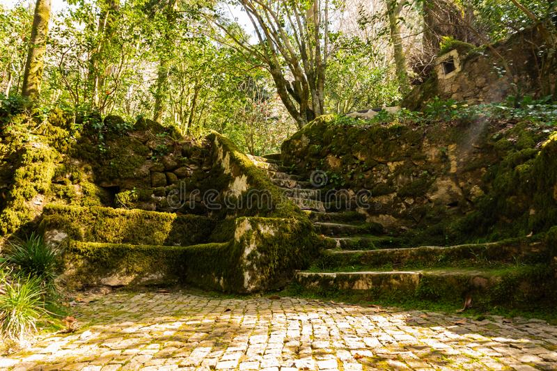 Sintra-Garten nahe dem Pena-Palast mit Steinbank und Treppe bedeckte Moos lizenzfreie stockfotos