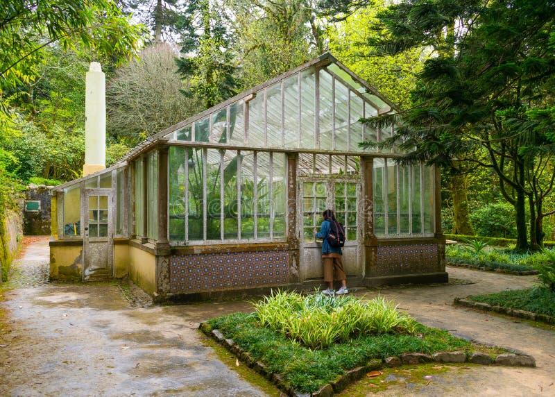 Sintra, Portogallo/Europa; 15/04/19: Vecchia serra nel Parco di Pena, Patrimonio dell'Umanità dell'UNESCO a Sintra, Portogallo fotografia stock libera da diritti