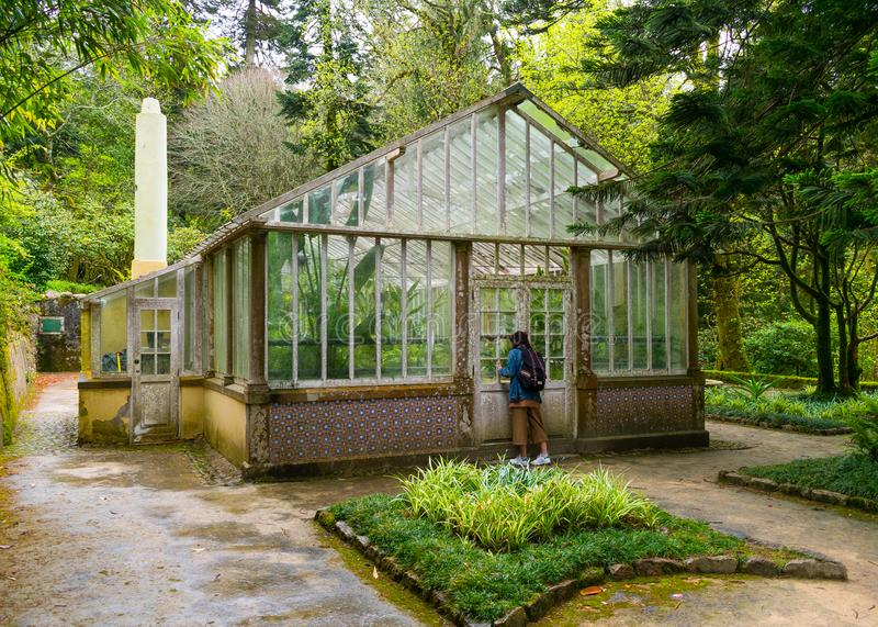 Sintra, Portugal/Europe; 15/04/19: Old greenhouse in Pena Park, Unesco World Heritage place in Sintra, Portugal. Hothouse, vintage, palace, tree, romantic royalty free stock photo