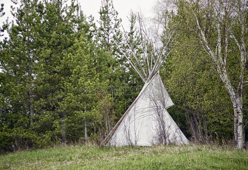 Sioux Teepee beside the Birch royalty free stock images