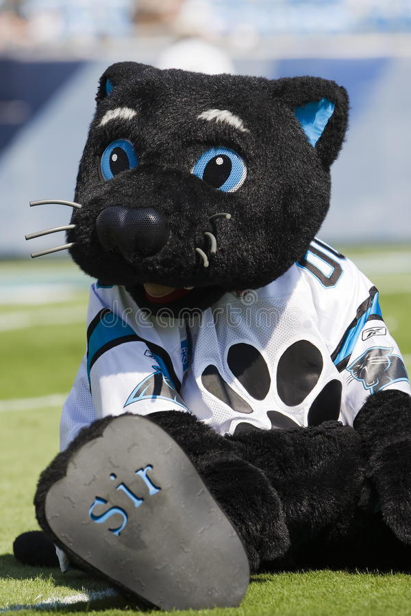 Download Sir Purr Kansas City Chiefs Vs Carolina Panthers Editorial Photography - Image: 11197872