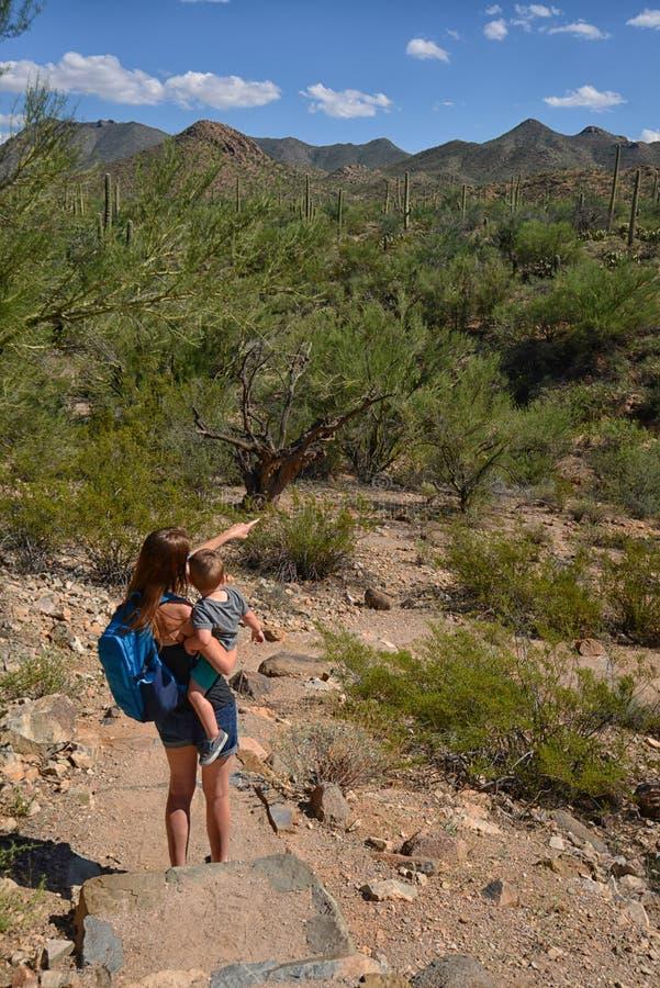 Sira de mãe à caminhada com a criança no sudoeste e a mostrar-lhe o cacto fotos de stock royalty free