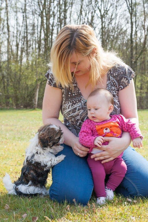 Sira de mãe a seus bebê e cachorrinho fotos de stock