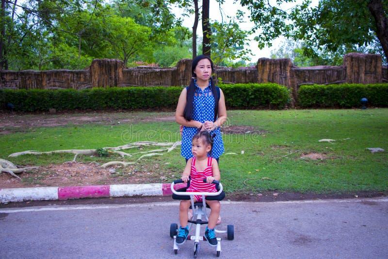 Sira de m?e ao passeio ao empurrar um carrinho de crian?a no parque fotografia de stock royalty free