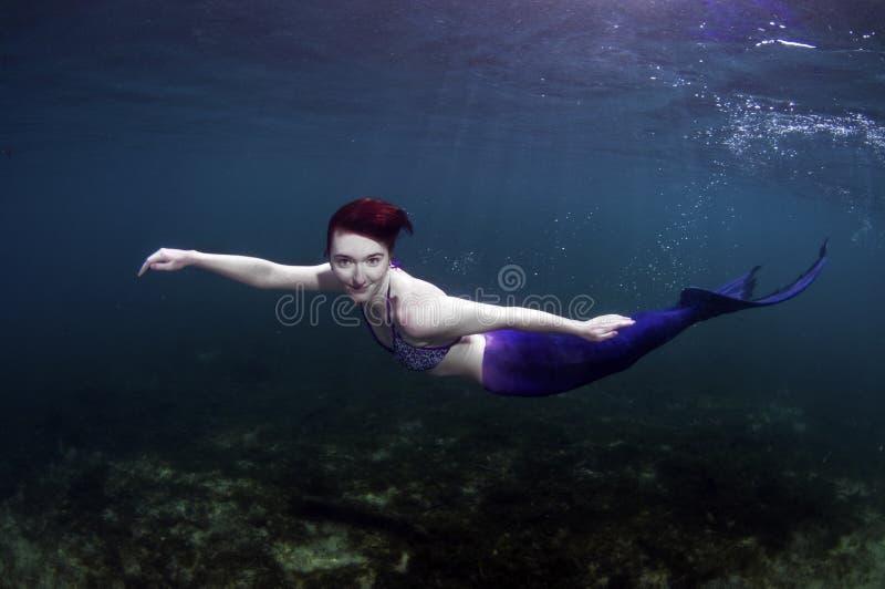 Sirena fotos de archivo