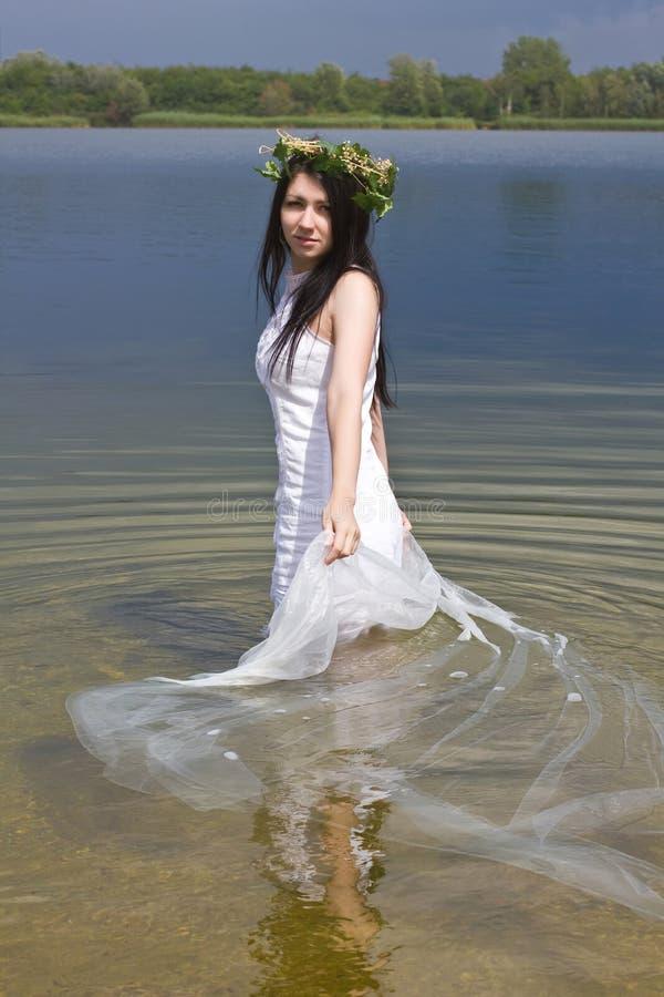 Sirena en el agua fotografía de archivo