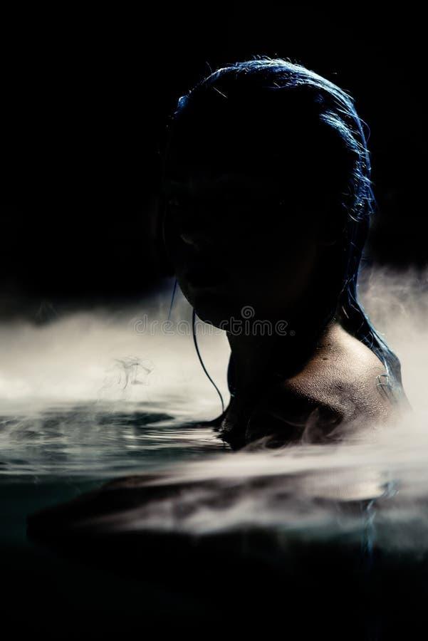 Sirenas de la noche foto de archivo
