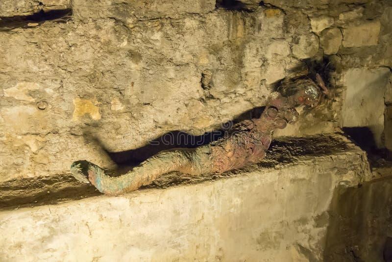 Sirene binnen kluis van de cerezuelorivier, onder de ruïnes van Th stock fotografie