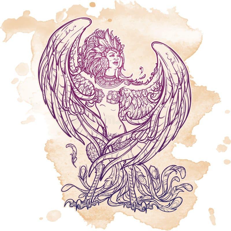 Sirin - metade-pássaro da metade-mulher em mitos e em contos de fadas do russo Canto e riso Desenho linear intrincado isolado ilustração do vetor