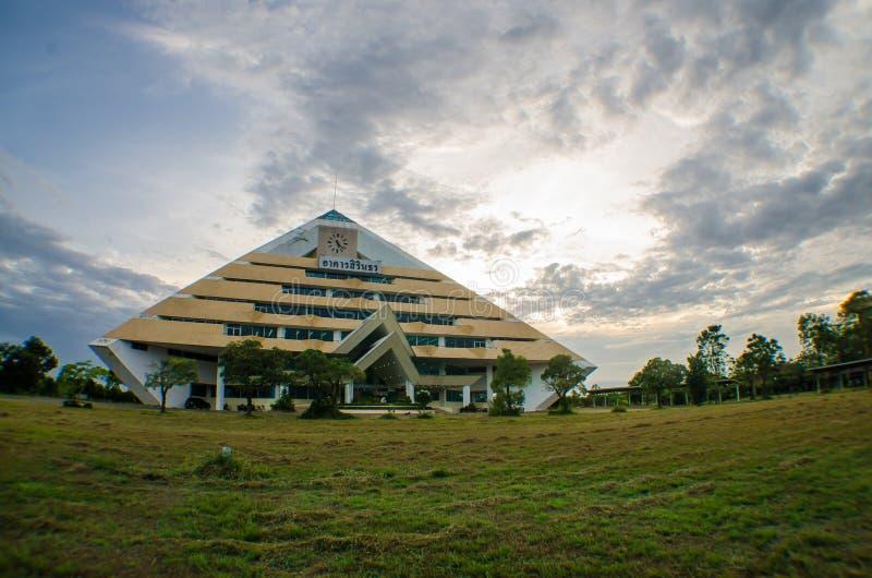Sirintron i universitet royaltyfria foton