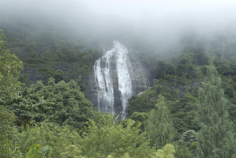 Download Siriphum waterfall 1. stock image. Image of foliage, jungle - 19612745