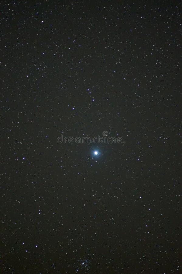 Sirius mit Teil von Canismajor lizenzfreies stockfoto
