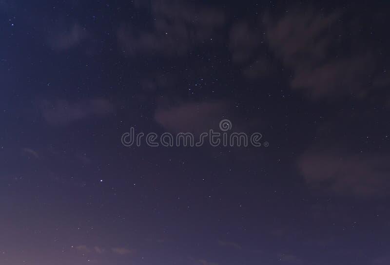 Sirius och Orion konstellation fotografering för bildbyråer